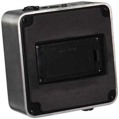 Palmer PAL-PEPAMP-MKII Pocket AMP MK2